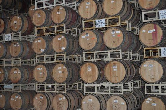 St. Helena, CA: Barrel room