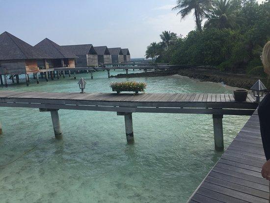 Foto Gangehi Island Resort