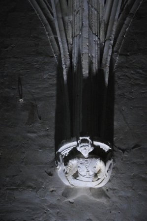 Fontevraud-l'Abbaye, Francia: Détail