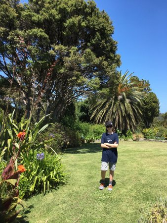 Watermark Holiday Studios: Our 13 yr. old in the garden.