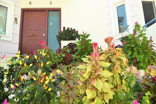 Elliniko, Grecia: Front garden