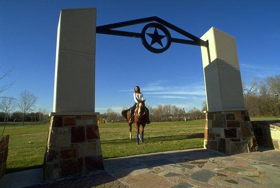 Irving, TX: Campion Trails Horseback Rider