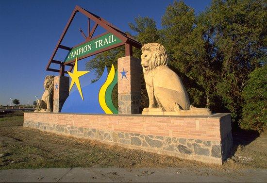 Irving, TX: Campion Trails