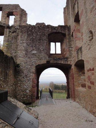 Oppenheim, Tyskland: Burg Landskron