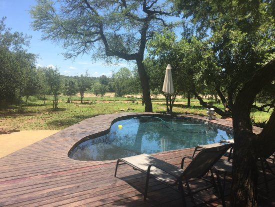 Marloth Park, South Africa: Mvuradona Safari Lodge
