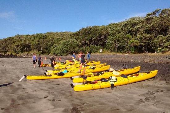 Auckland Sea Kayaks: shortly after arriving on the beach at mckenzie bay
