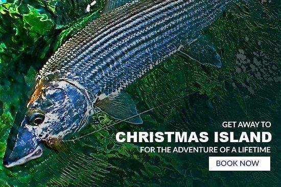 Boulder, CO: Hosted Trips to Christmas Island, Kiribati