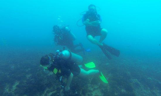 Caju Divers