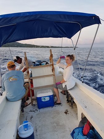 West End, Honduras: Not sure I can pull a fish in with no reel....
