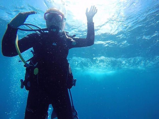 Alachua, FL: Key Largo Womens Dive Day! We need more diver girls!