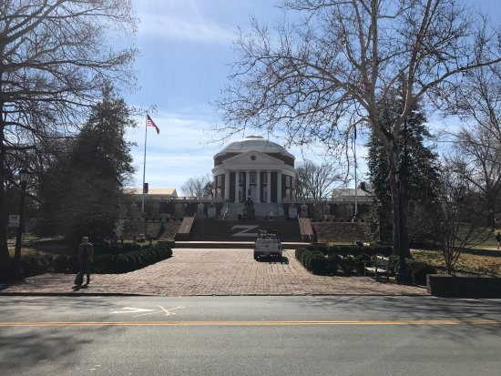 University of Virginia: photo1.jpg
