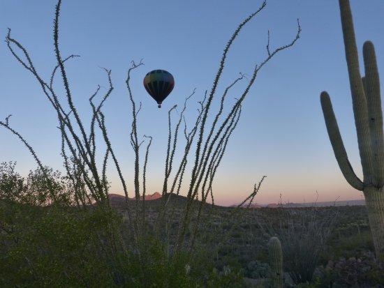 Fleur de Tucson Hot Air Balloon Rides : Just floating on air!