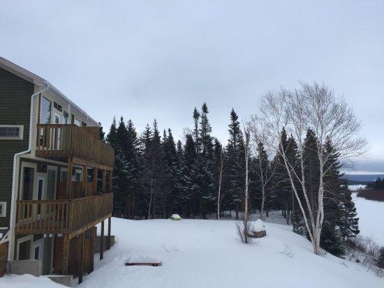 Springdale, Canadá: photo3.jpg
