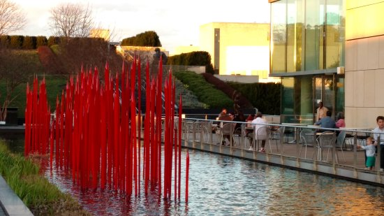 dale chihuly glass installation beside the patio cafe picture