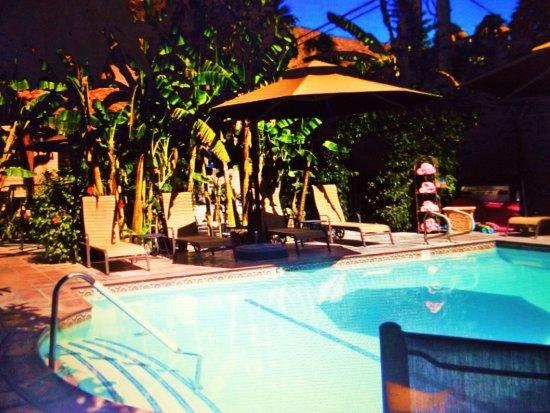 Hotel California: Lush private pool area