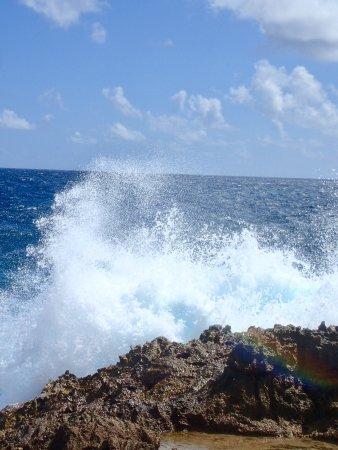 Savaneta, Aruba: photo5.jpg