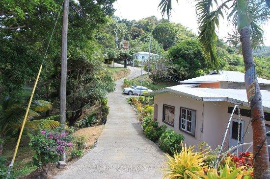 Charlotteville, Tobago: Charloteville