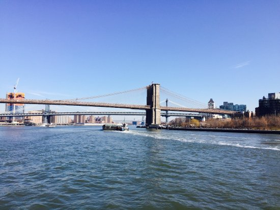 Spirit of New York: photo2.jpg