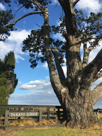 Takatu Lodge & Vineyard Photo