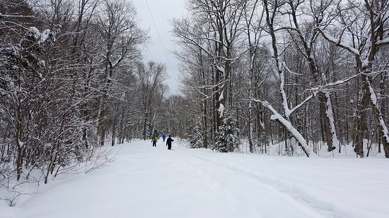 Dwight, Canada: Snowshoeing in from Hwy 60 to the main parking area (closed in winter) and hill leading to the F
