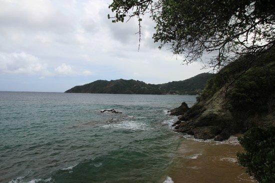 Northeast Coast, Tobago: Batteux Bay