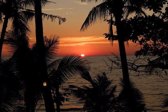 Paradise Palms Resort: sunset every day !