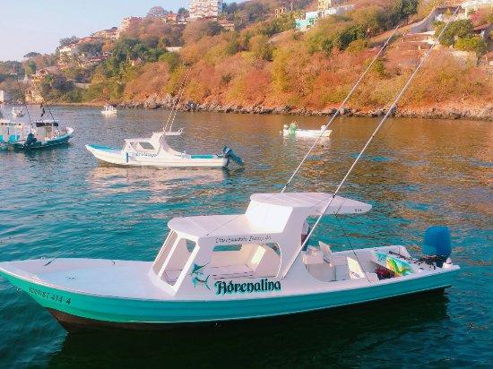 Ixtapa Island (Isla Ixtapa): panga deportiva....pesca o recorrido