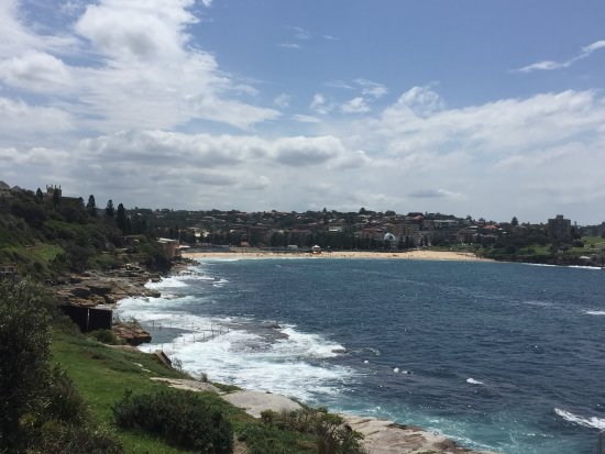 Photo of Beach Coogee Beach at Arden Street, Sydney, Ne, Australia