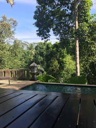 Anahata Villas & Spa Resort: photo8.jpg