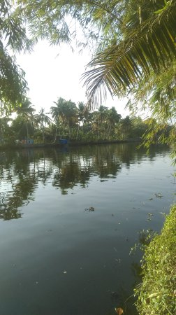 Palmgrove Lake Resort: View of backwaters from the resort