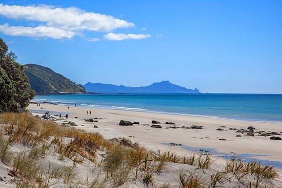 Mangawhai Heads Beach - 3 min drive