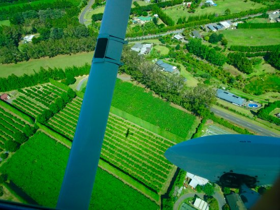 Kerikeri, Nya Zeeland: Birds eye view