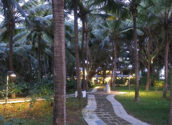 Aashyana Lakhanpal: Path leads to swimming pool and the beach