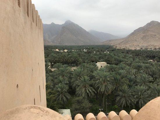 Al Batinah Governorate, Oman: photo2.jpg