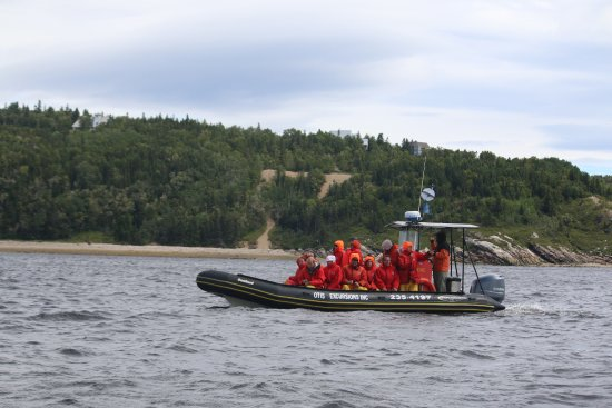 Tadoussac, Canada: Otis boat