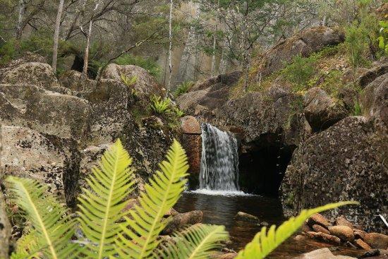 Tas4x4Tours: Mt Paris Dam, Weldborough. North East Tasmania