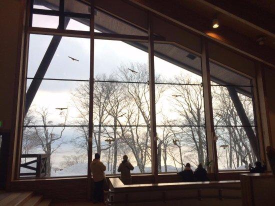 Chitose, Japan: 支笏湖遊客中心的一景,很棒很舒服的空間和環境,可以讓人坐上一整個下午放鬆心情去欣賞外面的雪景和夕陽。