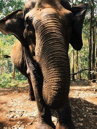Sen Monorom, Kambodsja: photo0.jpg