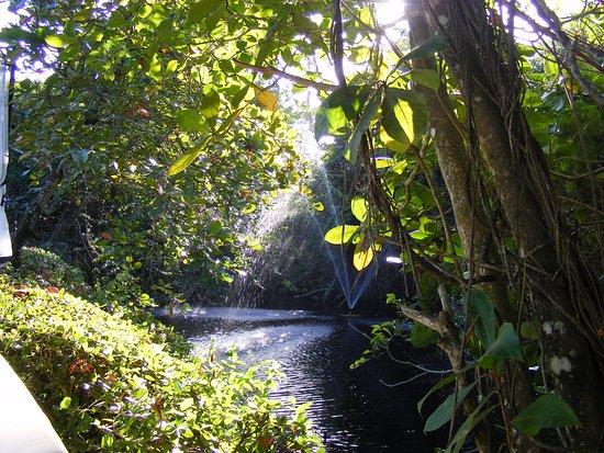Nature Et Lumiere jeu d'ombres et de lumière - picture of bluebay villas doradas