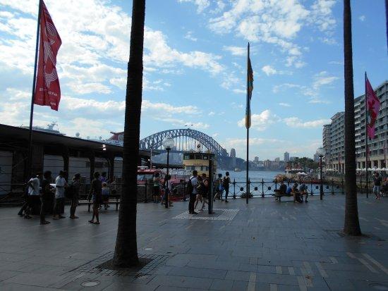 Circular Quay: 港を望む広場