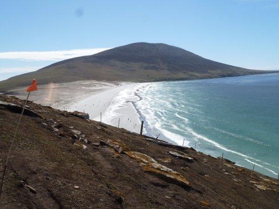 West Falkland, Νήσοι Φώκλαντ: Beach