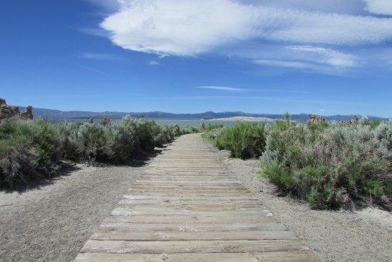 Lee Vining, Καλιφόρνια: Lac