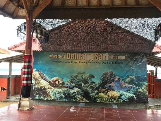 Tanjung Benoa, Indonesia: photo2.jpg