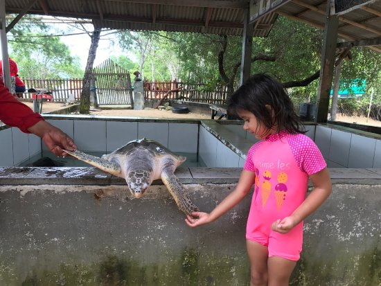 Tanjung Benoa, Indonesia: photo3.jpg