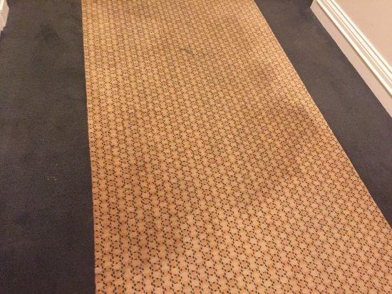 Glenelg, Australien: smelly mouldy wet carpet