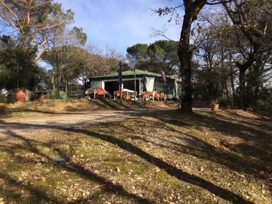Castelnuovo Berardenga, Italien: Pranzo in famiglia