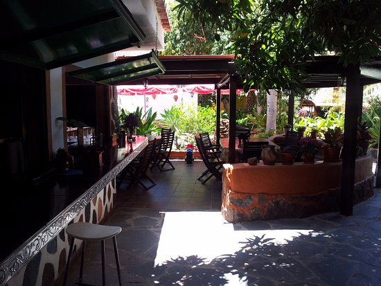 Restaurante el jardin garden en mog n con cocina otras for Restaurante jardin canario