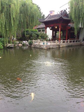 Chinese Garden of Friendship: photo1.jpg