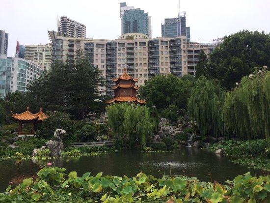 Chinese Garden of Friendship: photo2.jpg