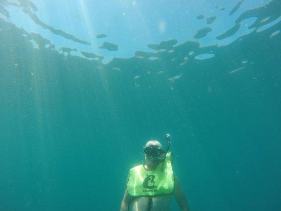 Herradura, Costa Rica: Underwater